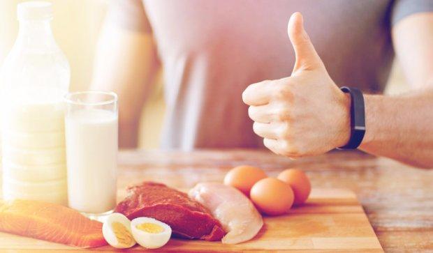 Роль белков в мышечной деятельности