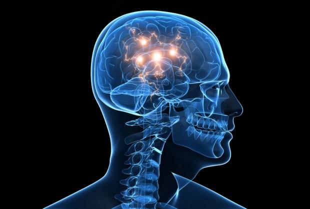 ТОП-6 продуктов для мозга