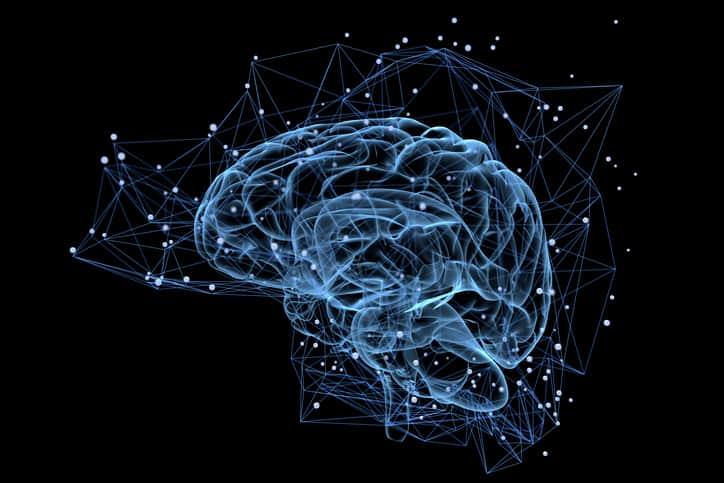 10 интересных фактов о человеческом мозге