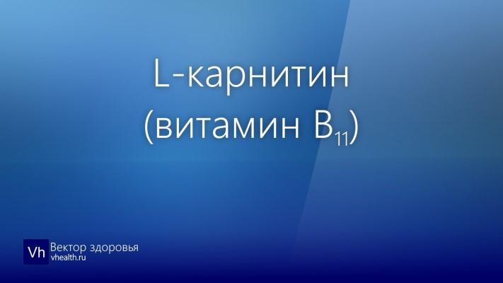 L-карнитин (витамин B11)